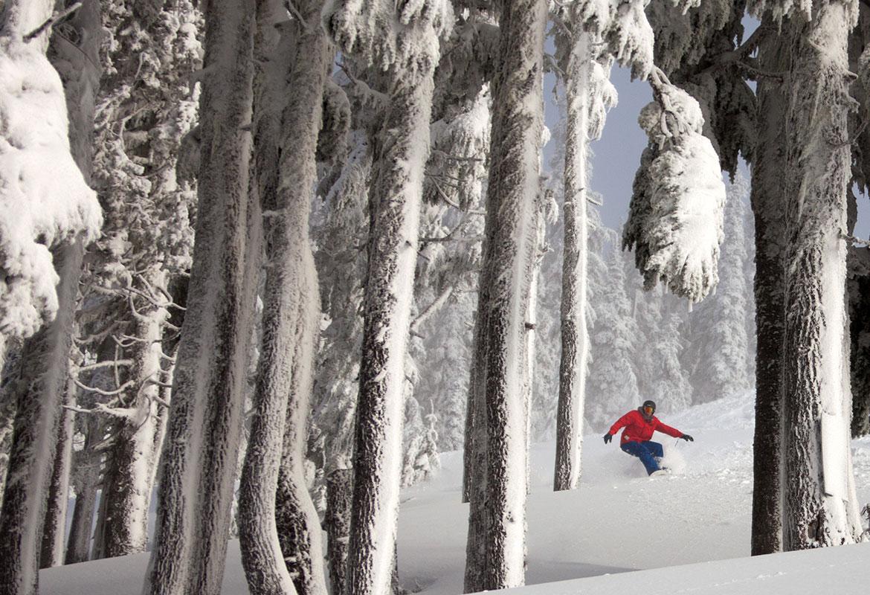 10-Week VI Riders at  Mount Washington Alpine Resort