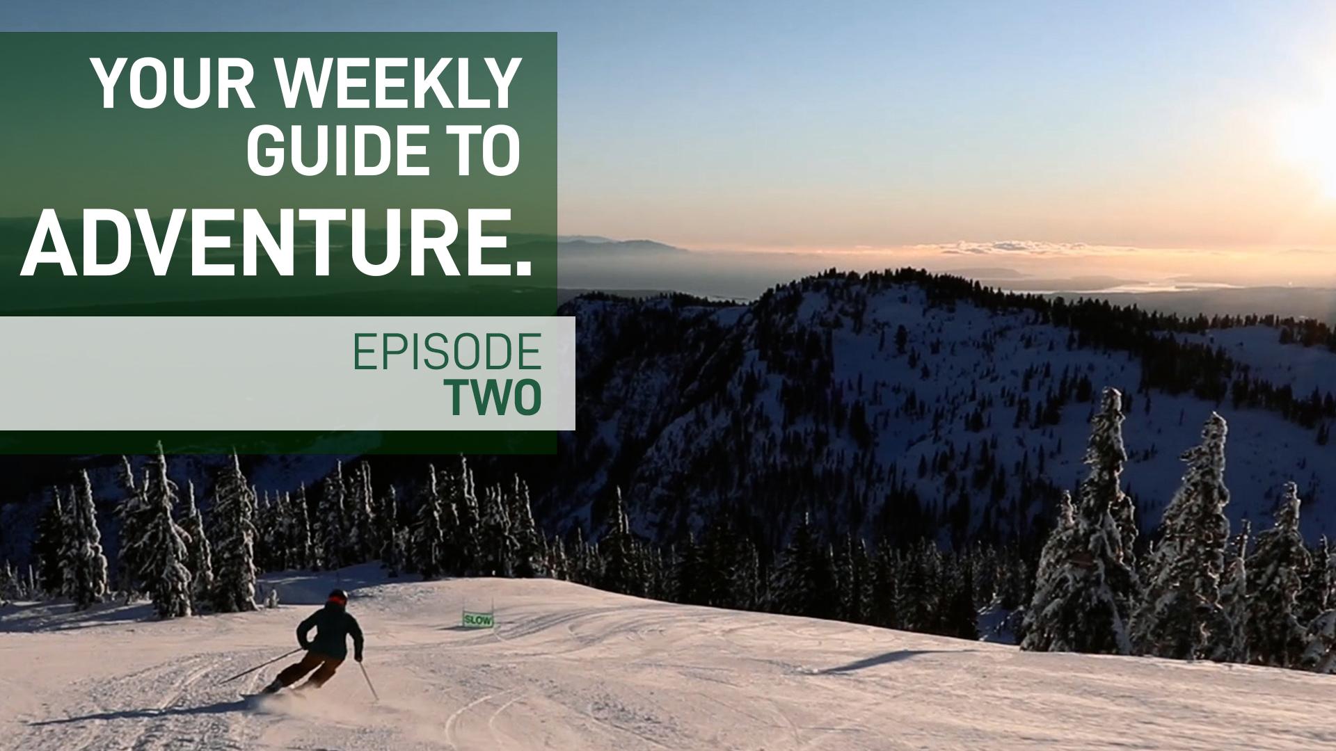 The Weekly Update - December 16